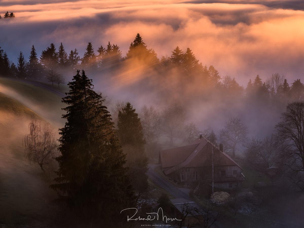 Emmental-Herbst-Nebelstimmungjpg
