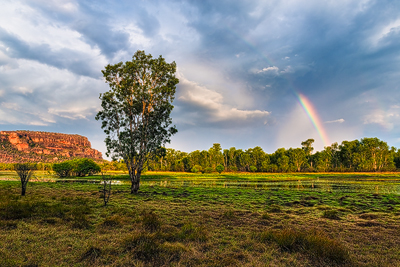 Making-of-Rainbow-Dream-Final-Imagejpg