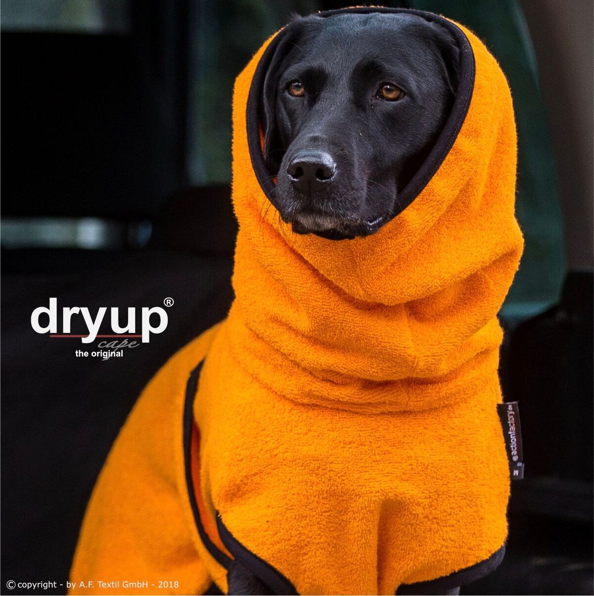 Dryup Cape Orange