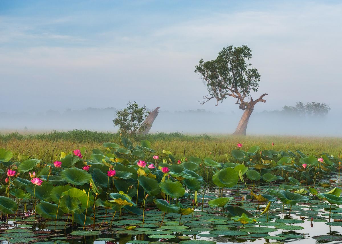 Kakadu National Park-Australia-Northern Territoryjpg