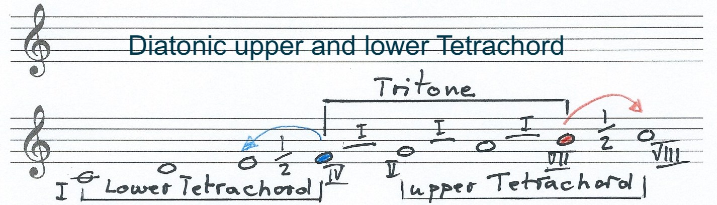 details of the upper and lower tetrachord