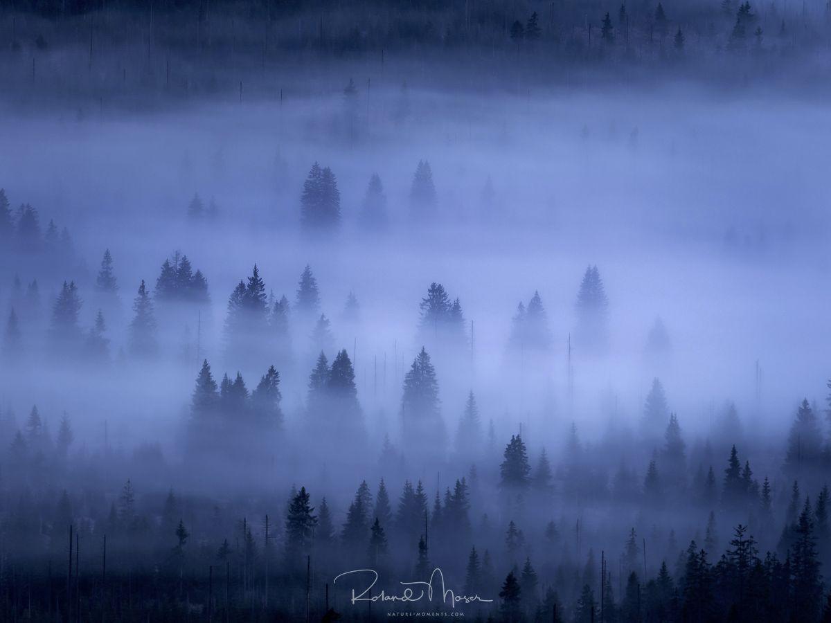 Bayerischer Wald-Lusenjpg