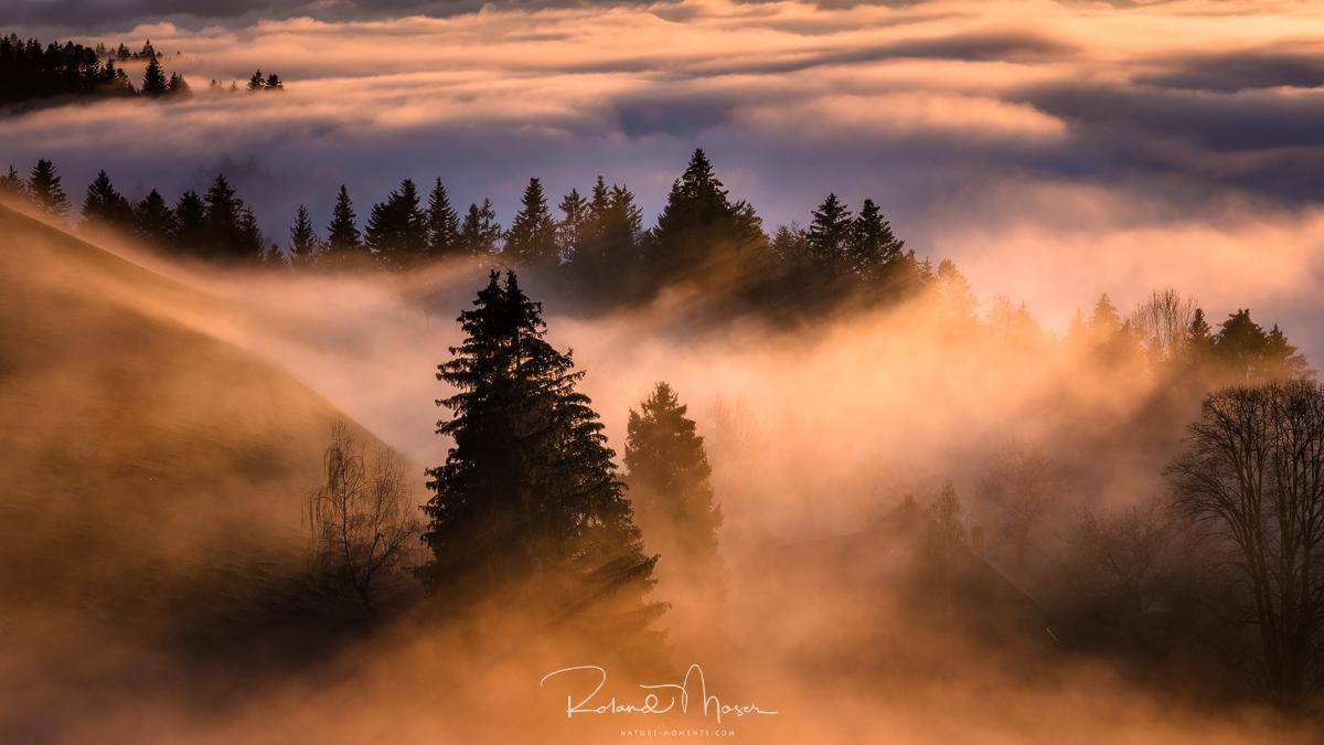 Emmental-Bern-Nebelstimmungjpg