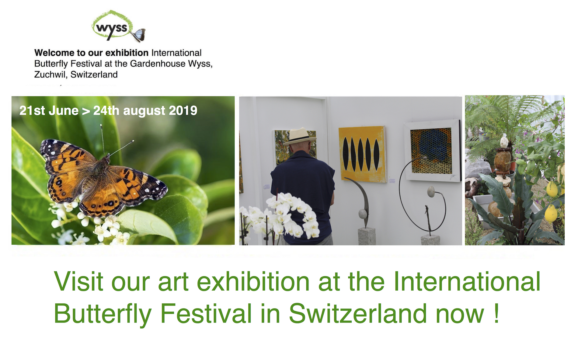 Exhibition Banner 2 -  International Butterfly Festival 2019 Kopiejpg