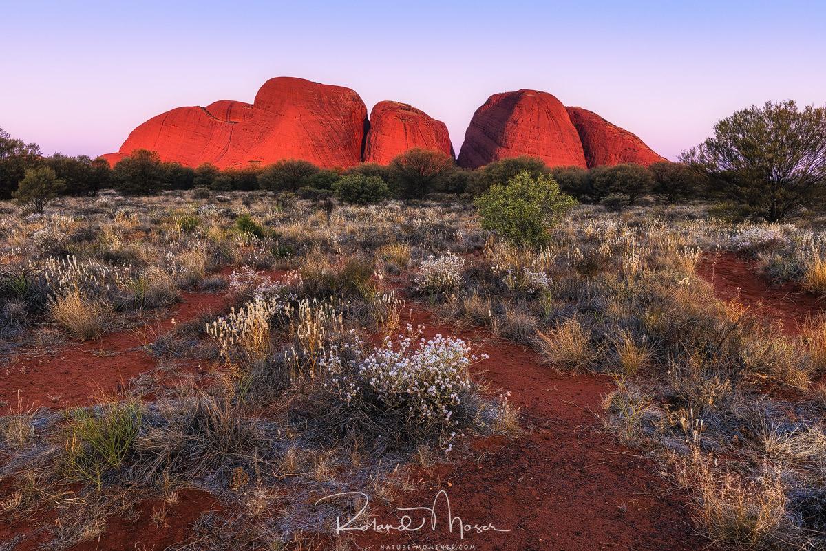 Olgas-Northern Territory-Australiajpg