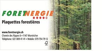 logoforenergiejpg